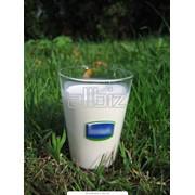 Молоко высочайшего качества фото