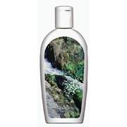Шампунь для Сухих Волос с витамином F, экстрактами шиповника и лопуха фото