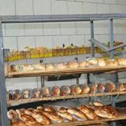 Трудоустройство в Чехии Работницы на хлебопекарню фото