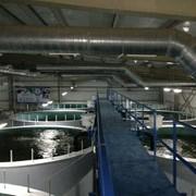 Сом канальный (американский), Рыба замороженная фото