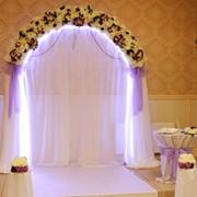 Фиолетовая свадебная арка фото