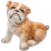 Скульптура Щенок Бульдога/Собака 27х24х20см. арт.AHURA-163 фото