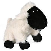 Плюшевая овечка с пищалкой Trixie Schaf (Трикси), 20 см фото