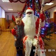 Дед Мороз и Снегурочка на дом. фото