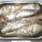 Консервы рыбные фото