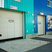 Промышленные секционные ворота фото