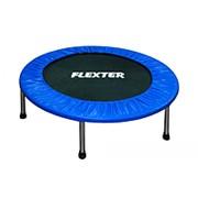 Батут Flexter диаметр 122 см фото
