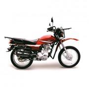 Мотоцикл Forester 200 фото