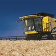 Зерноуборочные комбайны фото