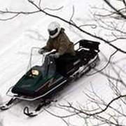 Снегоход Ямаха BR250T фото