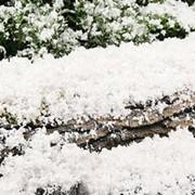 """Искусственный снег """"Snow-Base"""" (целлюлоза). Англия фото"""