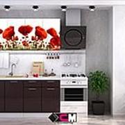 "Кухня с фотопечатью ""МАКИ"" 1,6 м. фото"