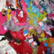 Одежда для животных в Алматы фото