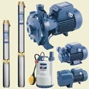 Ирригационное и поливное оборудование, Насосное оборудование SAER ELETTROPOMPE, ESPA, PEDROLLO, IMP PUMPS фото