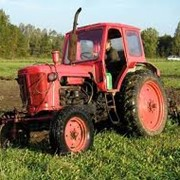 Тракторы в Кокшетау фото