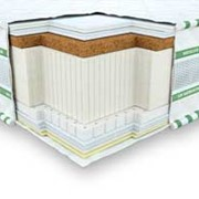 3D Галант Кокос-Латекс фото