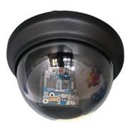 Купольные видеокамеры для установки внутри помещений AVTech KPC-132ZDP фото