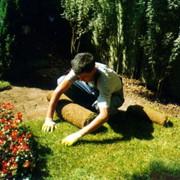 Обслуживание и уход за садом и ландшафтом фото