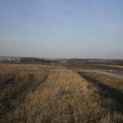 Продажа земельного участка 6 га в р-не окружной г. Харьков, пгт Песочин фото
