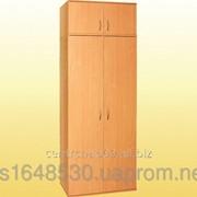 Шкаф для одежды, с выдвижной штангой 802х403х2186 мм., 0638+0653 фото