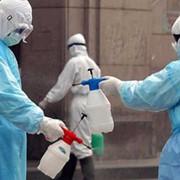 Уничтожение клопов, тараканов, крыс. www.дезинфекция.kz фото
