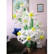 Оформление воздушными шарами любых праздников и мероприятий фото