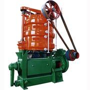 Оборудование для отжима растительного масла 200 тонн/сутки фото