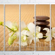 Модульна картина на полотні Орхідея. Дзен код КМ100150(150)-086 фото