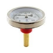 Термометр биметаллический 120°C L=60 (50) фото