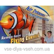 Летающая рыба Air Swimmers Рыба-Клоун Акула фото