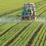 Гербицид против злаковых сорняков Фокстрот Экстра, 13,5% к.э. фото