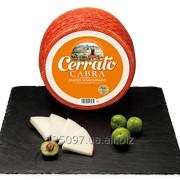 Козий выдержанный сыр Испания фото
