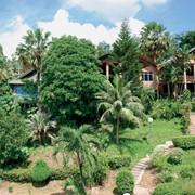 Таиланд - страна загадок и открытий! Отдых на любых курортах: в шумной Паттайе,загадочном Бангкоке, чарующих островах.Большой выбор отелей и любые даты заезда. фото