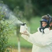 Химикаты для растений фото