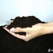 Производство органического удобрения «Биогумус» фото