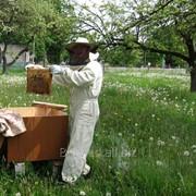 Комбинезон пчеловода на молнии х/б фото