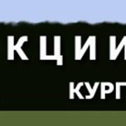 ОТДЫХ И ЛЕЧЕНИЕ В САНАТОРИЯX РОССИИ фото