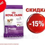 Сухой корм для щенков Royal Canin Giant Puppy 15 кг фото