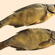 Рыбопереработка фото