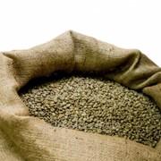 Кофе зеленый Арабика Эфиопия (Limu Gr.2) фото