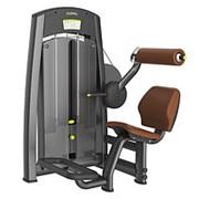 Профессиональный тренажер для зала отведение спины DHZ Fitness A858 фото