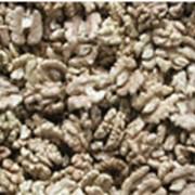 Ядро ореха грецкого фото