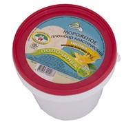 Мороженое Полочанка пломбир ванильный, 0.5 кг фото