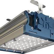 Низковольтный промышленный светильник TL-PROM 50 PR PLUS LV (Д) 24V фото