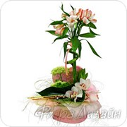 Букеты из живых цветов фото