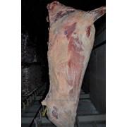 Мясо говядины 1 категории замороженное 1100 с НДС фото