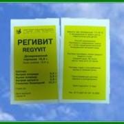 Препарат Регивит фото