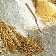 Производство муки пшеничной, продуктов мукомольной промышленности, переработка сельскохозяйственных продуктов фото