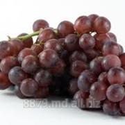Виноград ,poama фото