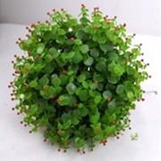 Искусственный шар (красные ягоды), d 30 см фото